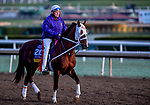 October 30, 2019: Breeders' Cup Distaff entrant Street Band, trained by J. Larry Jones, exercises in preparation for the Breeders' Cup World Championships at Santa Anita Park in Arcadia, California on October 30, 2019. Scott Serio/Eclipse Sportswire/Breeders' Cup/CSM