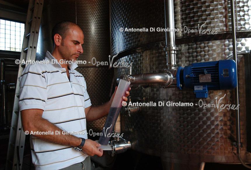 Azienda Agricola Casale Marchese è una azienda in una delle zone più tipiche della produzione del vino Frascati D.O.C. Situata nell'area dei Castelli Romani..The Casale Marchese company lies in Roman Hills. The most typical area for the wine production Frascati D.O.C..Cantina di botti di acciaio inossidabile. Wine cellar of stainless steel barrels..Enologo mentre controlla la qualità. Winemaker while controls the quality.......