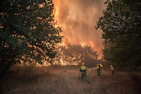 A firefighters tries to extinguish flames at the site of a wildfire in Cualedro, near Ourense on August 30, 2015. A fire broke out on August 30, 2015 around noon in the Cualedro town in Galicia, northwest Spain, affecting at least 3,180 hectares of forest, as seven fires continued to burn in Spain, three in Galicia, one in Cantabria, one in Castile and Leon, one in Catalonia and Extremadura. © Pedro ARMESTRE