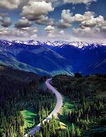 Road to Hurricane Ridge. Olympic National Park, Washington.