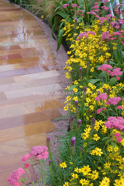 Pink and yellow perennial garden border with old-fashioned and heirloom flowers, Achillea, Liatris, Coreopsis