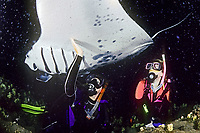 scuba divers and reef manta ray, Manta alfredi, feeding at night, Kona Coast, Big Island, Hawaii, Pacific Ocean, model released