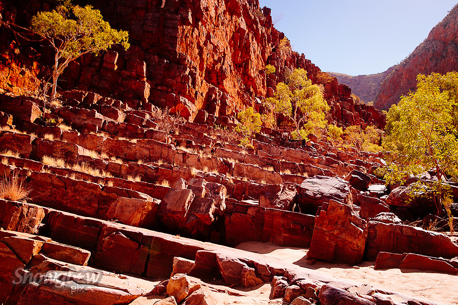 Image Ref: CA546<br /> Location: Ormiston Gorge, Northern Territory<br /> Date of Shot: 16.09.18