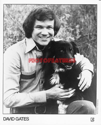 David Gates on Elektra<br /> photo from promoarchive.com/ Photofeatures