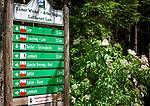 Deutschland, Bayern, Oberpfalz, Naturpark Oberer Bayerischer Wald, Lamer Winkel, Lam: Wegweiser am Wanderweg Glaesener Steig | Germany, Bavaria, Upper Palatinate, Nature Park Upper Bavarian Forest, Lamer Winkel, Lam: signpost at hiking trail Glaesener Steig