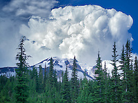 Mt. Adams with thundercloud.. Washington