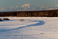 Teams on the Yentna river with  the Alaska Range in the background a few hours after leaving the re-start line in Willow during the 2011 Iditarod.