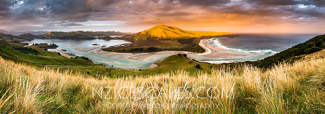 Sunset over Hoopers Inlet, Dunedin, Otago Peninsula, East Coast, New Zealand, NZ
