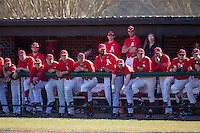 The Belmont Abbey Crusaders watch the action from the dugout during the game against the Shippensburg Raiders at Abbey Yard on February 8, 2015 in Belmont, North Carolina.  The Raiders defeated the Crusaders 14-0.  (Brian Westerholt/Four Seam Images)