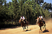 Argentina. Gauchos in a display of horseback skills; Estancia Argentino, near Buenos Aires.