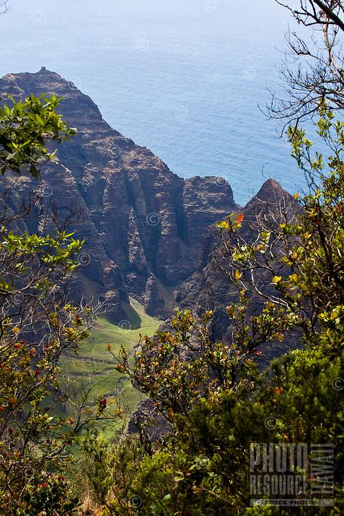 View of Awa'awapuhi trail  and cliffs above the Na pali coastline on the north shore of Kauai