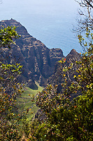 View of Awa'awapuhi trail  and cliffs above the Na pali coastline on the north shore of Kauai