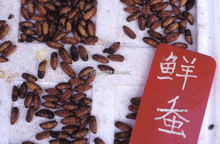 "Silkworm chrysalises sell for around 10 RMB  (1.3 US$) per 500 grams and are sold for around 50 RMB per dish in restaurants. The ""Fresh Wildlife"" restaurant that specializes in selling various insects including potato grubs,  earth worms, scorpions, water beetles and bee larvae...PHOTO BY SINOPIX"