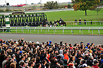 17 October 2009: The gate crew attends to Jockey Robby Albarado after he was thrown from his mount at the start of the sixth race at Keeneland race course in Lexington Kentucky.