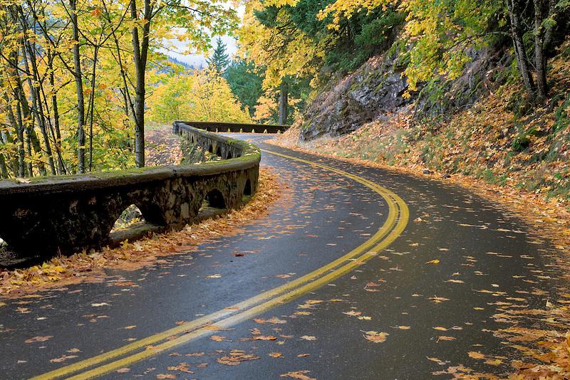 Columbia River Gorge National Scenic Area road. Oregon