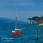 Sailboat, Marshall, Tomales Bay, Point Reyes National Seashore, Marin County, California