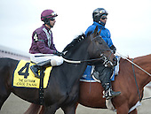 Ore Pass, a son of War Pass, shipped up from Park/Laurel with Julian Pimentel, but finished last in the Gotham.