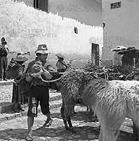 Menschen und Lamas auf dem Markt in Cusco, Peru 1960er Jahre. People with lamas at Cusco market, Peru 1960s.