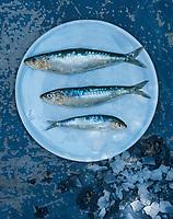 Gastronomie/ Les Sardines - Stylisme : Valérie LHOMME