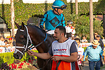 DEL MAR, CA  SEPTEMBER 2: #7 Nucky, ridden by Norberto Arroyo, Jr., in the paddock before the Runhappy Del Mar Futurity (Grade l) on September 2, 2019, at Del Mar Thoroughbred Club in Del Mar, CA.( Photo by Casey Phillips/Eclipse Sportswire/CSM)
