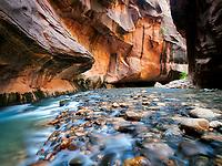 Stream and canyon walls. Zion National Park, UTah.