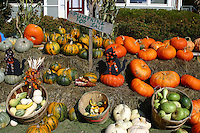 A farmer's market in front of a historic bed and breakfast, fall in Vermont.