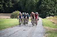 Race leaders: Walsleben, Mcnally, De Bondt, Van der Hoorn, Reihs, Evensen, Allegaert, Pardini, Kooistra, Declerq & Senechal gravel grinding<br /> <br /> Dwars door het Hageland (1.1)<br /> 1 Day Race: Aarschot > Diest (194km)