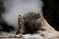Giant Geyser is pictured in the Upper Geyser Basin in Yellowstone National Park, Wyoming on Tuesday, May 23, 2017. (Photo by James Brosher)