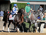 LEXINGTON, KY - OCTOBER 08: #11 Mosler and jockey Jose Lezcano in the 20th running of the Woodford Presented by Keeneland Select (Grade 3) $150,000 at Keeneland Race Course in Lexington, KY.  October 8, 2016, Lexington, Kentucky. (Photo by Candice Chavez/Eclipse Sportswire/Getty Images)