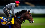 October 30, 2020: Higher Power, trained by trainer John W. Sadler, exercises in preparation for the Breeders' Cup Classic at  Keeneland Racetrack in Lexington, Kentucky on October 30, 2020. Alex Evers/Eclipse Sportswire/Breeders Cup