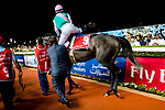 DUBAI, UNITED ARAB EMIRATES - MARCH 25: Mike Smith (pink hat), mounts Arrogate in the walking circle prior to the Dubai World Cup at Meydan Racecourse during Dubai World Cup Day on March 25, 2017 in Dubai, United Arab Emirates. (Photo by Douglas DeFelice/Eclipse Sportswire/Getty Images)