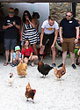 04/08/19<br /> <br /> Hens scramble to get away from the start.<br /> <br /> Hundreds of spectators watch as competitors race their hens at the World Championship Hen Racing on a purpose-built track outside the Barley Mow pub in Bonsall, in the Derbyshire Peak District.<br />  <br /> All Rights Reserved, F Stop Press Ltd +44 (0)7765 242650 www.fstoppress.com rod@fstoppress.com