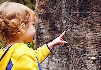 Four year old girl pointing to tree rings, Cascade Mountains, Washington, USA