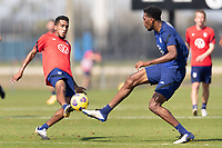 BRADENTON, FL - JANUARY 23: Jesus Ferreira, Donovan Pines battle for a ball during a training session at IMG Academy on January 23, 2021 in Bradenton, Florida.