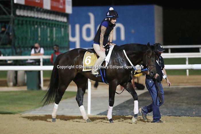 March 25, 2021: UAE Derby contender Yaupon trains on the track for trainer Steve Asmussen at Meydan Racecourse, Dubai, UAE.<br /> Shamela Hanley/Eclipse Sportswire/CSM