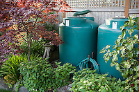 Rainwater cisterns water storage connected to gutter in small space backyard garden; Jennifer Carlson garden