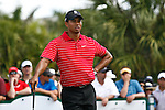 DORAL, FL. - Tigewr Woods during final round play at the 2009 World Golf Championships CA Championship at Doral Golf Resort and Spa in Doral, FL. on March 15, 2009