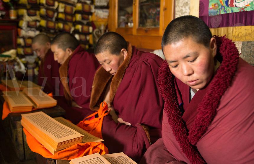 Nepal Himalayas  Buddhist nuns reading praying at the Kharigandentenphelling Monastery in the village of Thamo Solukhumbu Mt Everest remote religion Buddhst nunery Buddhism  85 86 87 88 89 90
