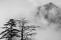 Mist over Mount Hua, one of China's five Sacred Taoist Mountains, in Shaanxi, China.