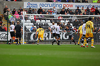 ATTENTION SPORTS PICTURE DESK<br /> Pictured: Dorus de Vries of Swansea City in action<br /> Re: Coca Cola Championship, Swansea City Football Club v Newcastle United at the Liberty Stadium, Swansea, south Wales. 13 February 2010