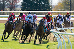 November 7, 2020 : Horses round the corner during the Turf Sprint on Breeders' Cup Championship Saturday at Keeneland Race Course in Lexington, Kentucky on November 7, 2020. Dan Heary/Breeders' Cup/Eclipse Sportswire/CSM