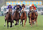August 14, 2011.Horses leave the gate for the John C. Mabee Stakes at Del Mar Thoroughbred Club, Del Mar, CA