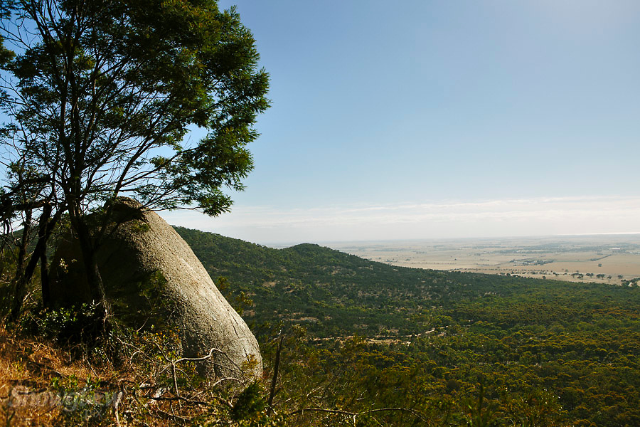 Image Ref: CA457<br /> Location: You Yangs<br /> Date of Shot: 17th Dec 2016