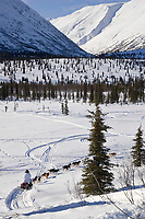 John Barrons team mushes down embankment to Puntilla Lake outside Rainy Pass Chkpt 2006 Iditarod AK