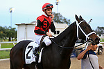 January 16, 2016: Chocolate Ride with Florent Geroux up heads to the winners circle after winning the Col. E.R. Bradley Handicap race at the Fairgrounds race course in New Orleans Louisiana. Steve Dalmado/ESW/CSM