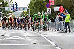 Belking leading the bunch, Arnhem Veenendaal Classic , UCI 1.1, Veenendaal, The Netherlands, 22 August 2014, Photo by Thomas van Bracht / Peloton Photos