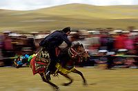 The highest horse races in the world at 4500 meters near Naqu in Tibet, This festival is held once a year at around August but can change every year. A nomad competing in the race at full speed