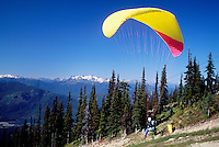 Whistler, BC, British Columbia, Canada - Paraglider flying at Paragliding Meet on Blackcomb Mountain (Coast Mountains), Whistler Resort, Summer