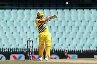 13th March 2020, Sydney Cricket Ground, Sydney, Australia;  Aaron Finch batting. International One Day Cricket. Australia versus New Zealand Blackcaps, Chappell–Hadlee Trophy, Game 1.