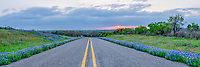 Roadside Bluebonnet with Stormy Sunset Pano - We were leaving the area when we noticed that the at the base of the clouds some color was shinning through at sunset and the road was lined with nice bluebonnets so we stoppped and captured this photo.  We like the way this road curved as we were climbing out and it look kinda of cool so we stopped to capture the sunset from this point of view.  You never know when an opportunity in the Texas Hill Country will happen so you got to capture it when you can.  We love the texas wildflowers and we drive a great distance to find them and the texas hill country is one of our favorite places to visit.